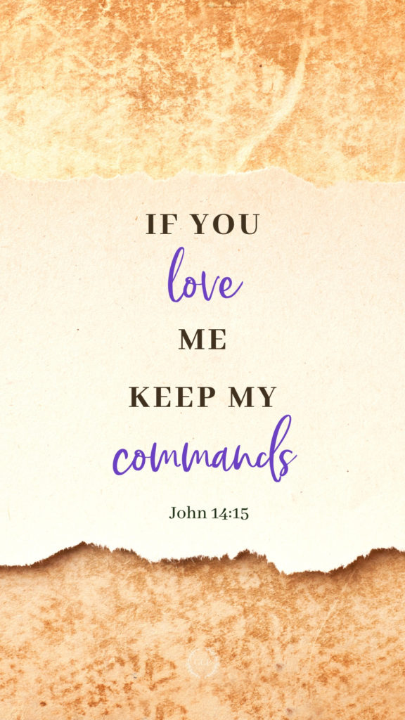 image of john bible verse phone wallpaper