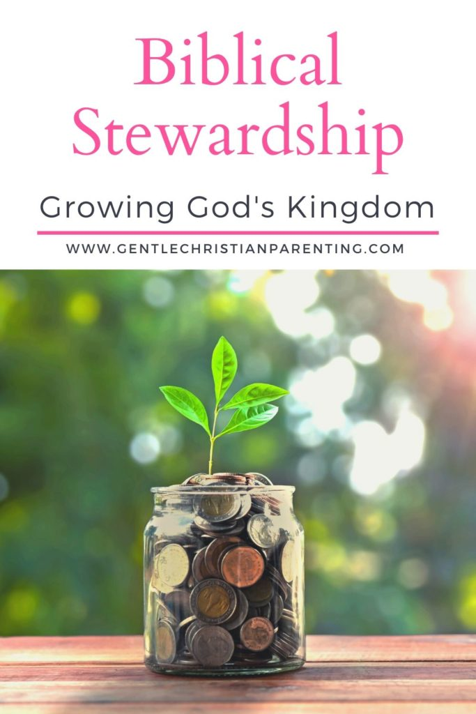 jar with money and a small plant growing out of it - biblical stewardship