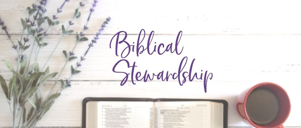 image of bible and biblical stewardship