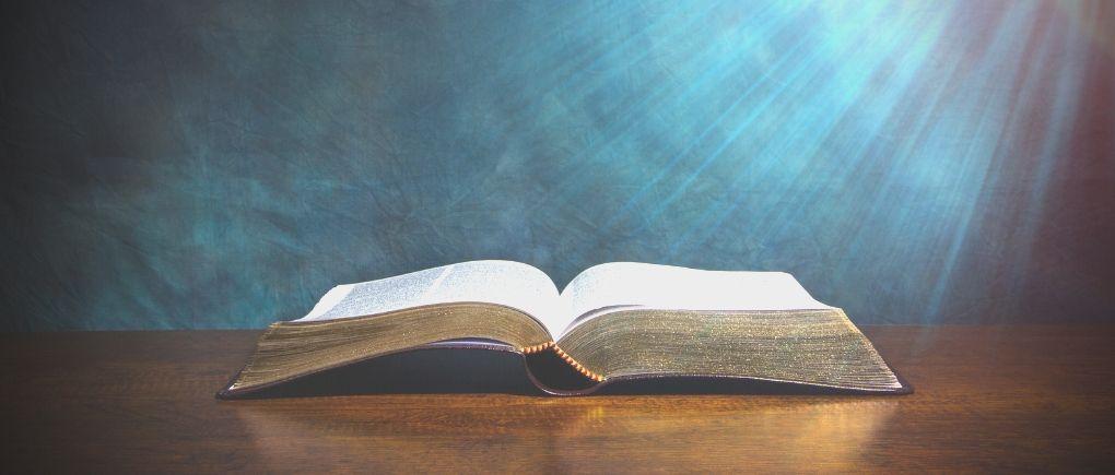 Good Steward in the Bible
