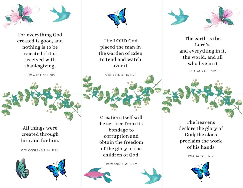 bible verse cards on creation printable